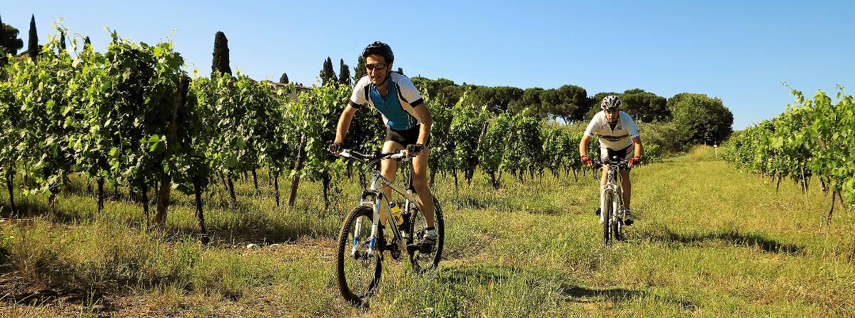 Chianti Classico Bike Tour