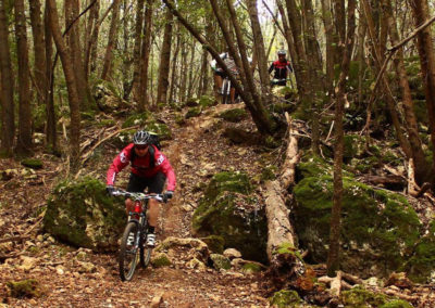 mountain bike enduro trails near Monteriggioni